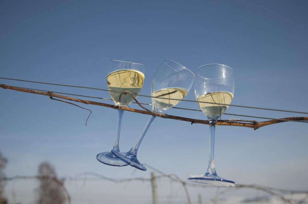 Un vin alb pour les connaisseurs