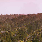 O escapadă în Champagne, locul unde poți vedea unele dintre cele mai mari case producătoare de șampanie