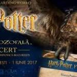 Harry Potter și Piatra Filozofală™ - în concert