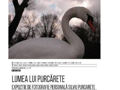 Lumea lui Purcărete, regizorul peliculei Undeva la Palilula, deschisă la Sibiu