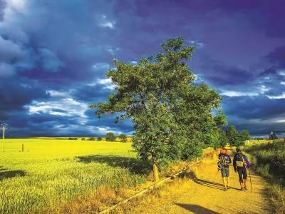 Minuni pe Camino