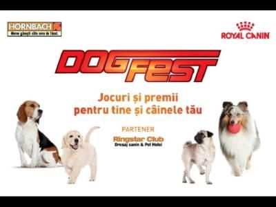 Începe DogFest, eveniment dedicat câinilor
