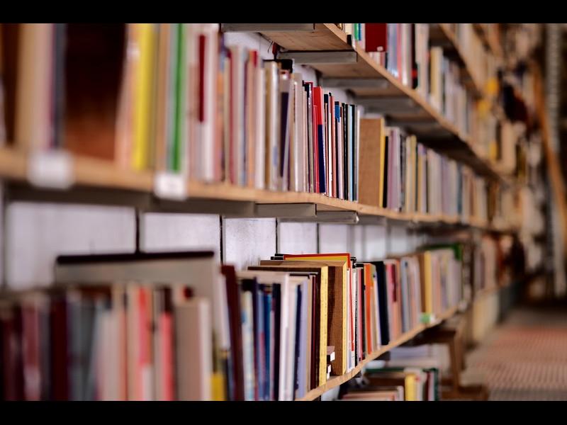Care sunt cele mai furate cărți ale anului trecut?