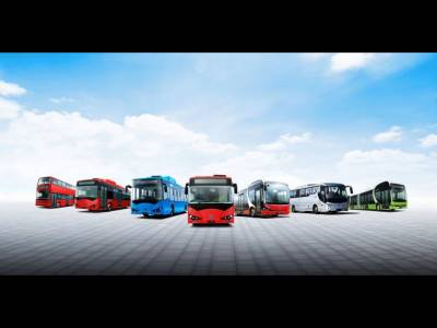 BYD Electric Busses