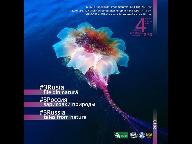 #3Rusia - file din natură