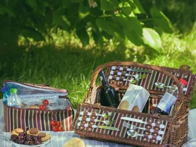 Cum alegi un cos de picnic – idei si sfaturi