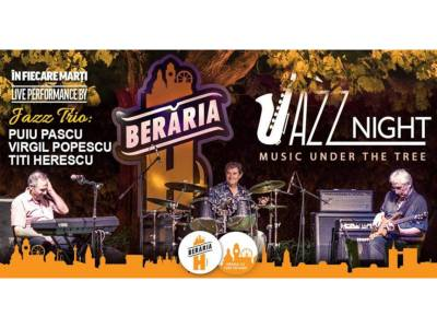 Jazz Trio LIVE - Music Under The Tree