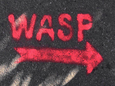 WASP - Working Art Space & Production