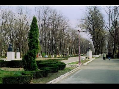 Parcul Cancicov