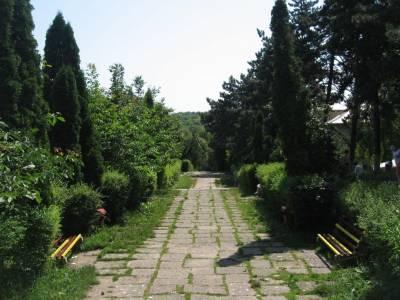 Parcul Cetăţii
