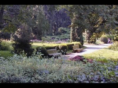 Grădina Botanică a Universității de Medicină și Farmacie