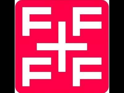 Fundatia Friends for Friends