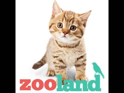 Zoo Land