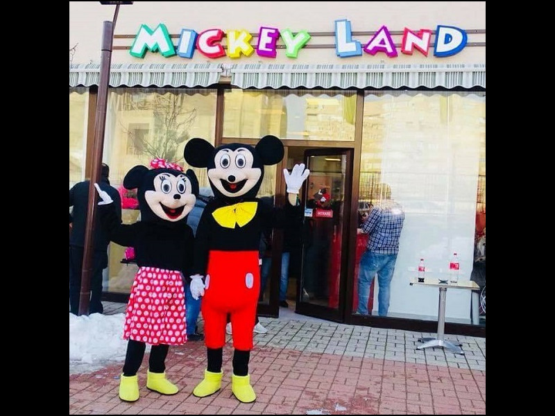 Mickey Land