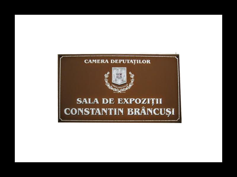 Sala de Expoziţii Constantin Brâncuşi