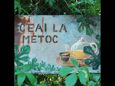 Ceai la Metoc