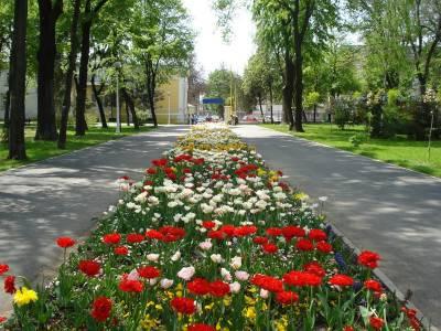 Grădina Mare