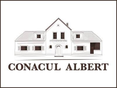 Conacul Albert