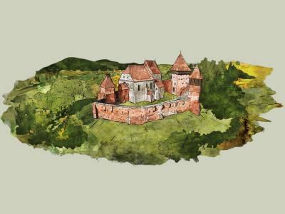 Cetatea Medievală Alma Vii